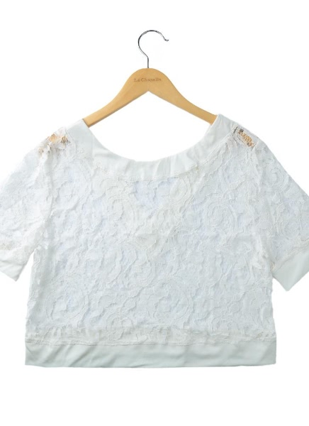 Buy Sexy Lace Hollow Backless Short Sleeve Beach Cover Crop Top
